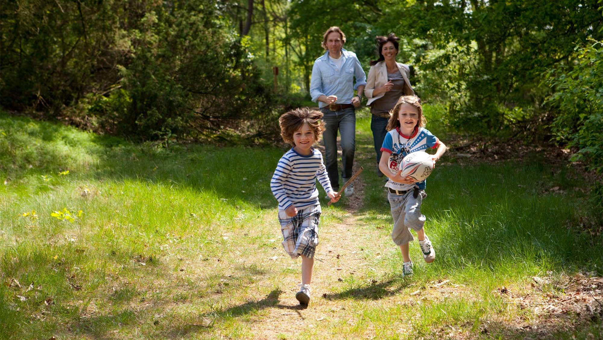 Omgeving Molecaten Park Kuierpad Drenthe 18 wandelen