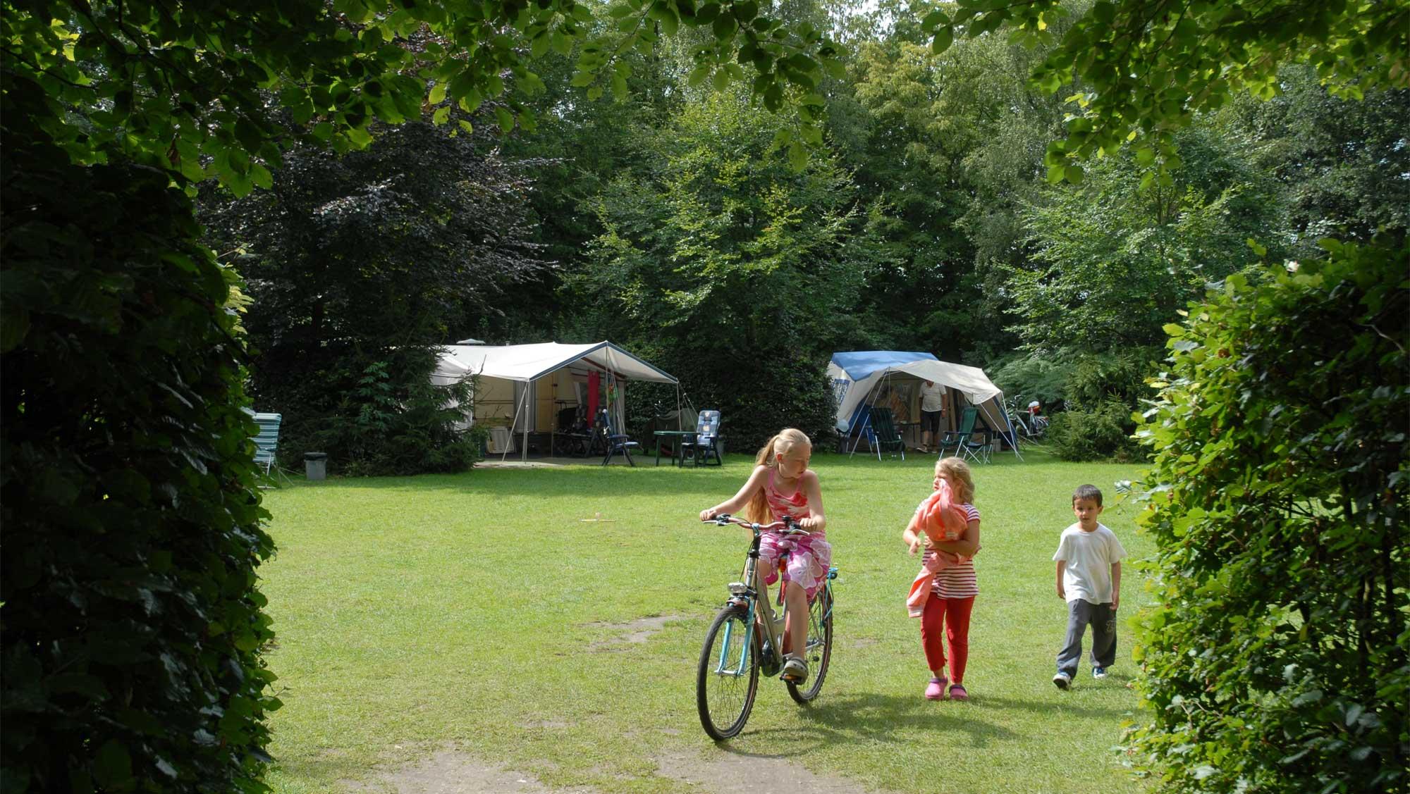 Basisplaats kamperen Molecaten Park Landgoed Molecaten 05