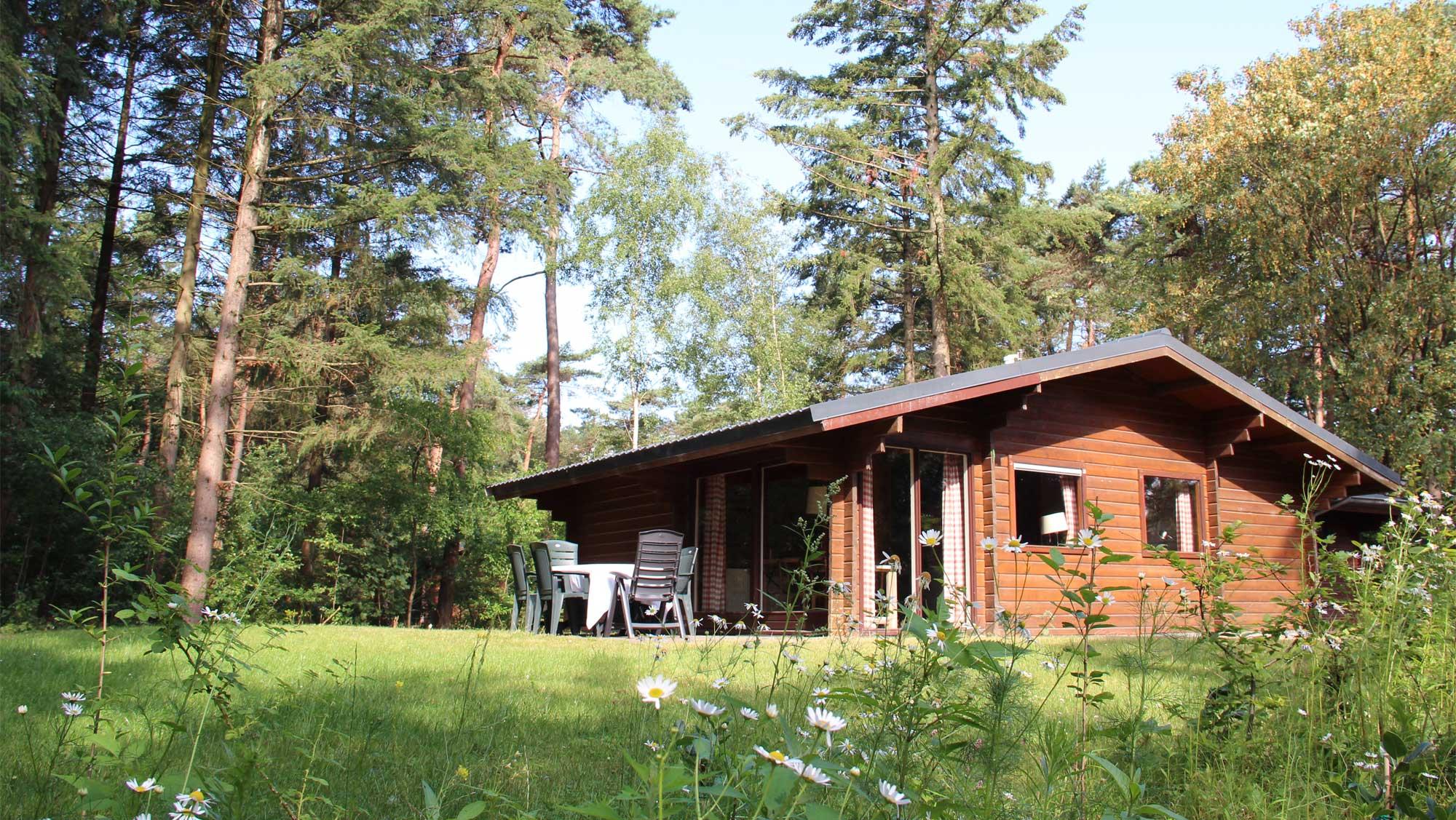 6pers bungalow Finse Molecaten Park Landgoed Ginkelduin 01