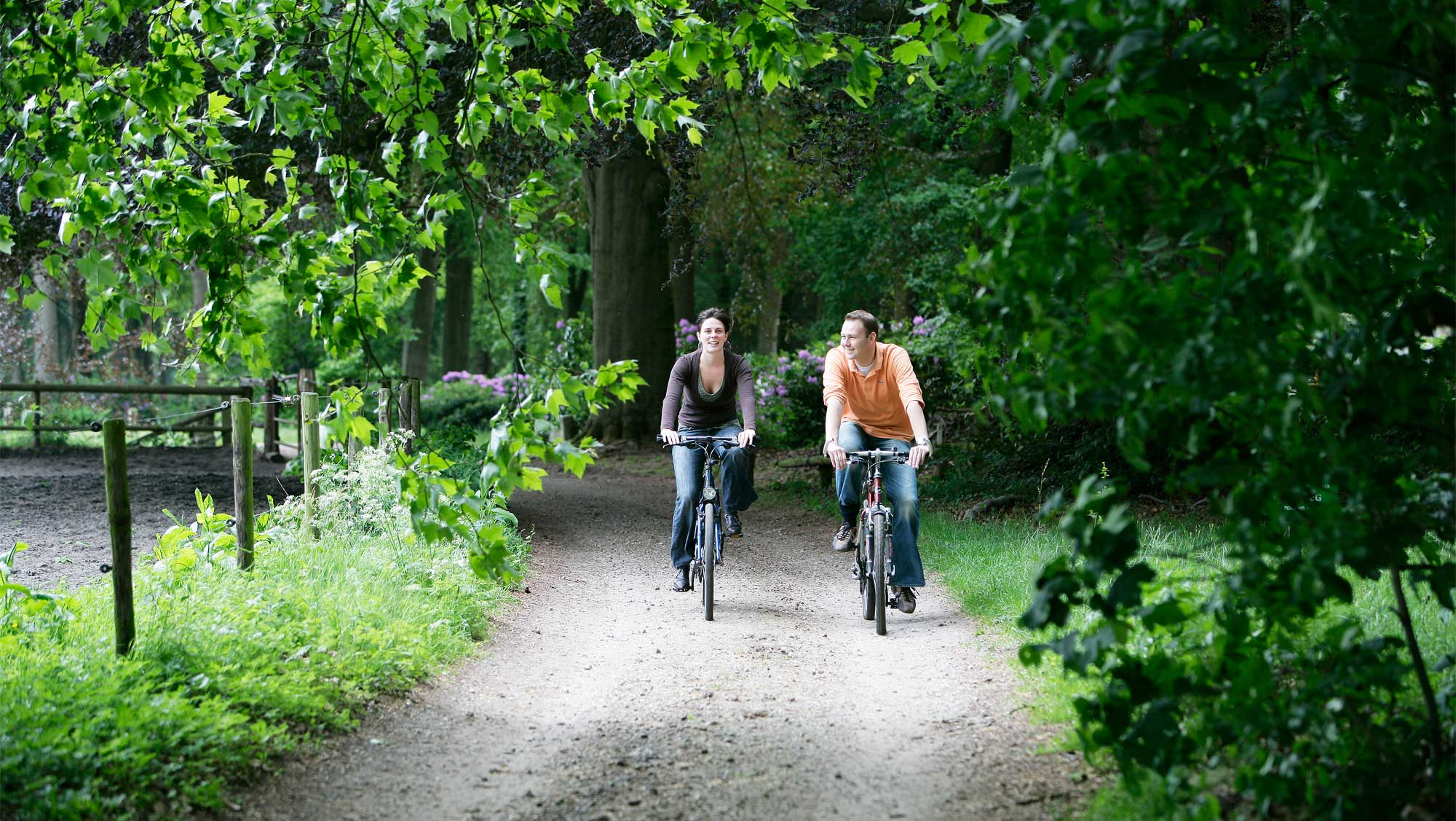 Omgeving Molecaten parken Hattem Heerde 08 fietsen