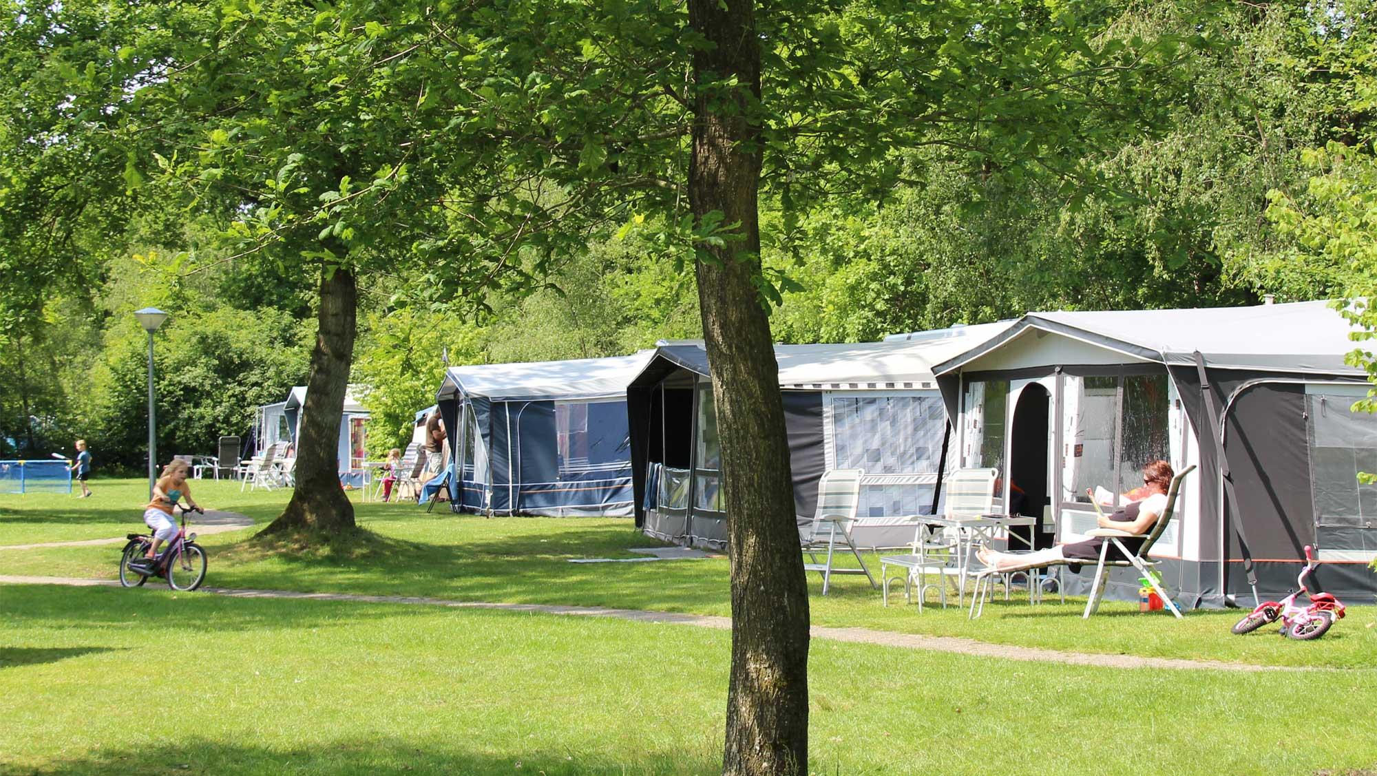 Comfortplaats A kamperen Molecaten Park t Hout 06