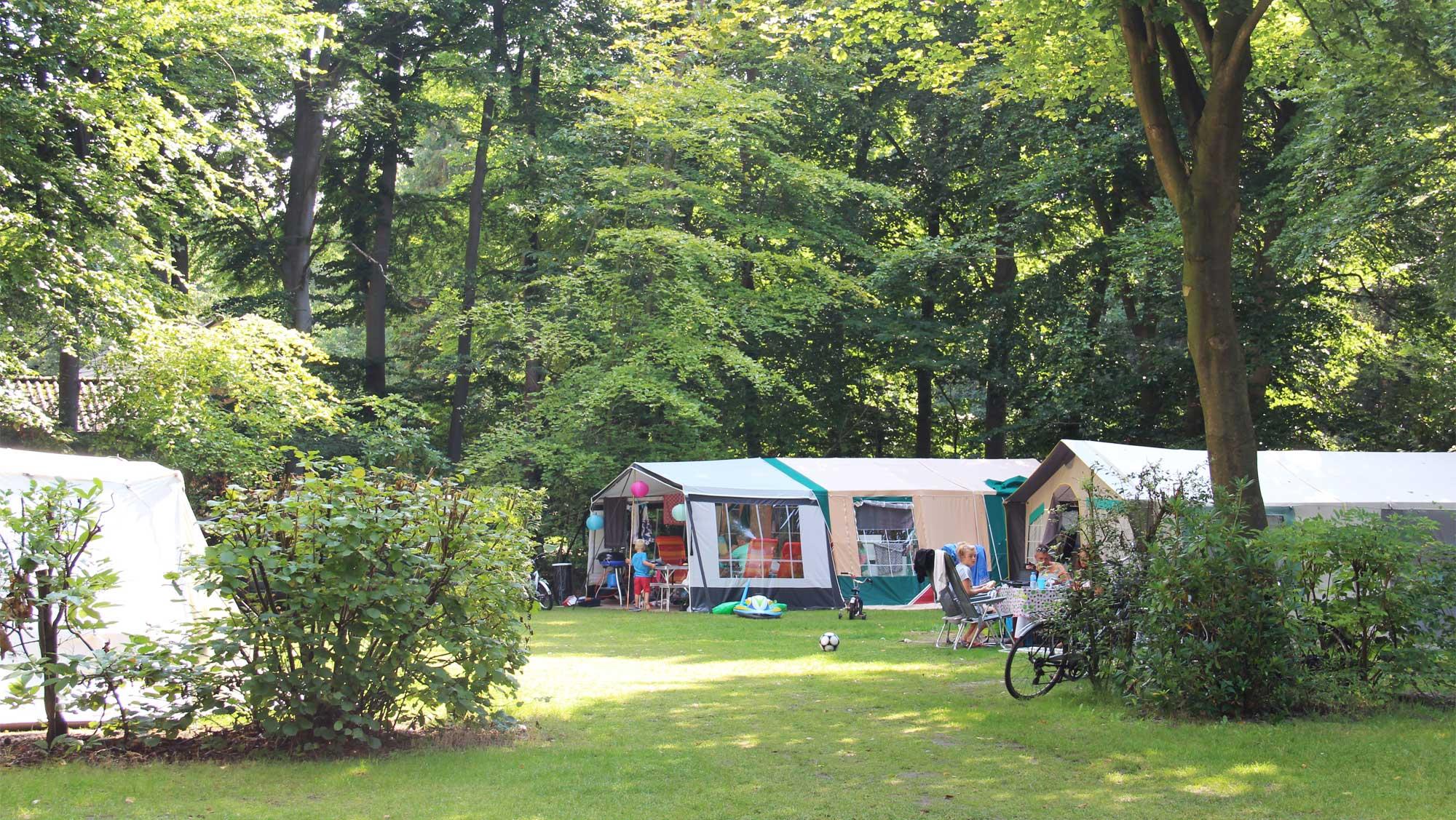 Comfortplaats kamperen Molecaten Park Bosbad Hoeven 09