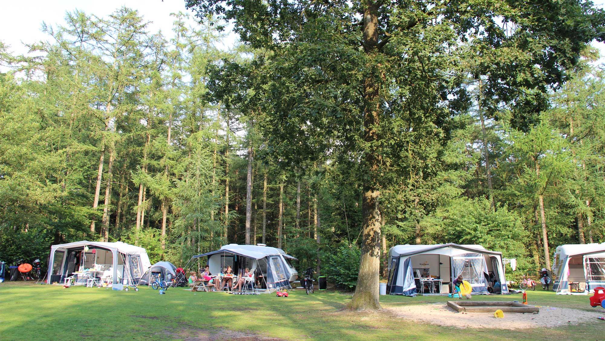Comfortplaats kamperen Molecaten Park De Leemkule 08