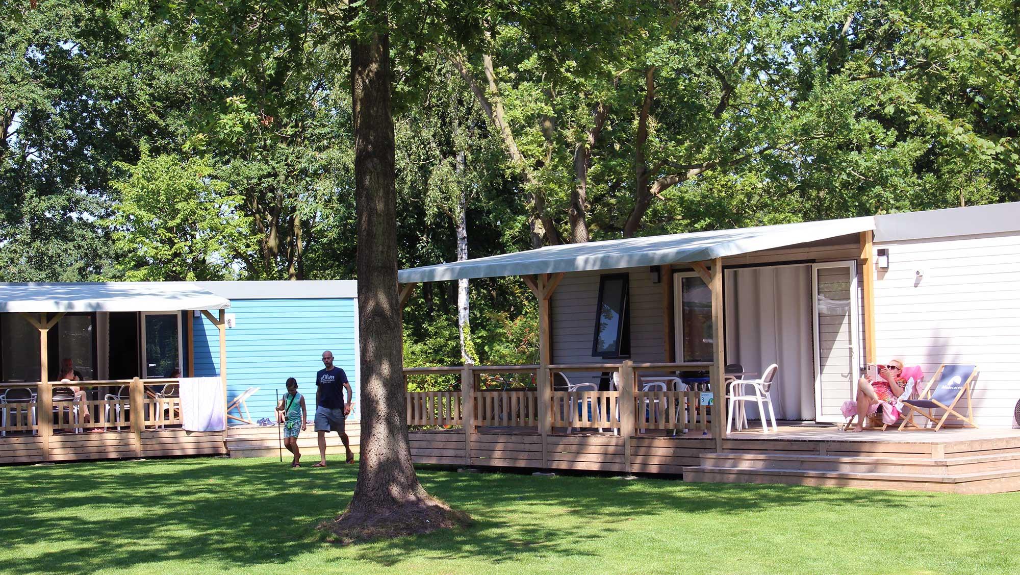 6pers chalet Lavendel Molecaten Park Bosbad Hoeven 01