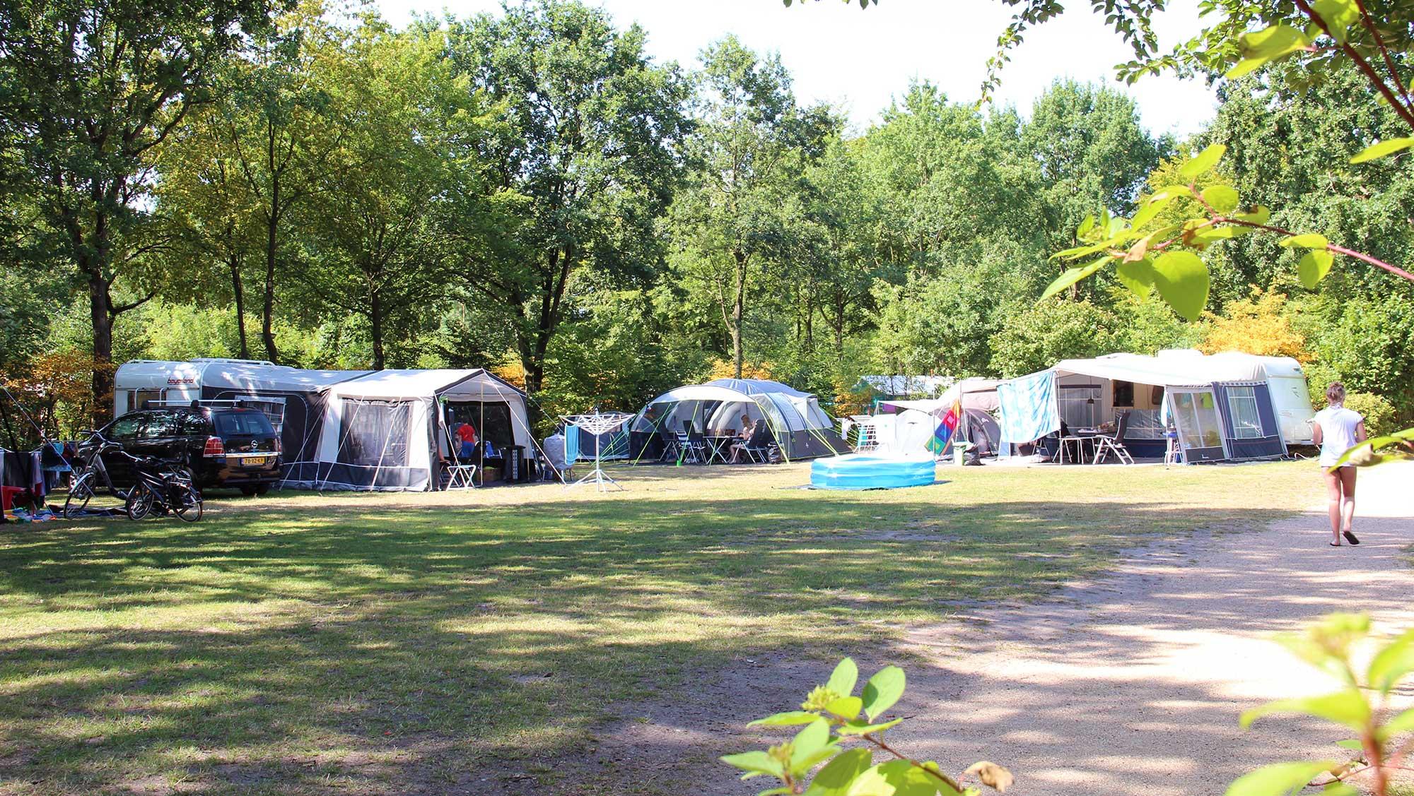 Comfortplaats kamperen Molecaten Park Bosbad Hoeven 04
