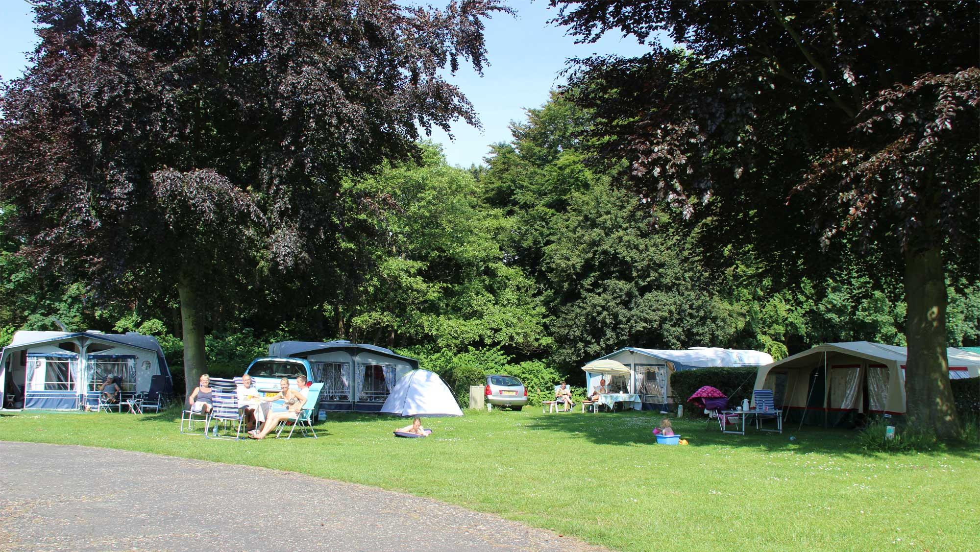 Basisplaats kamperen Molecaten Park Waterbos 03