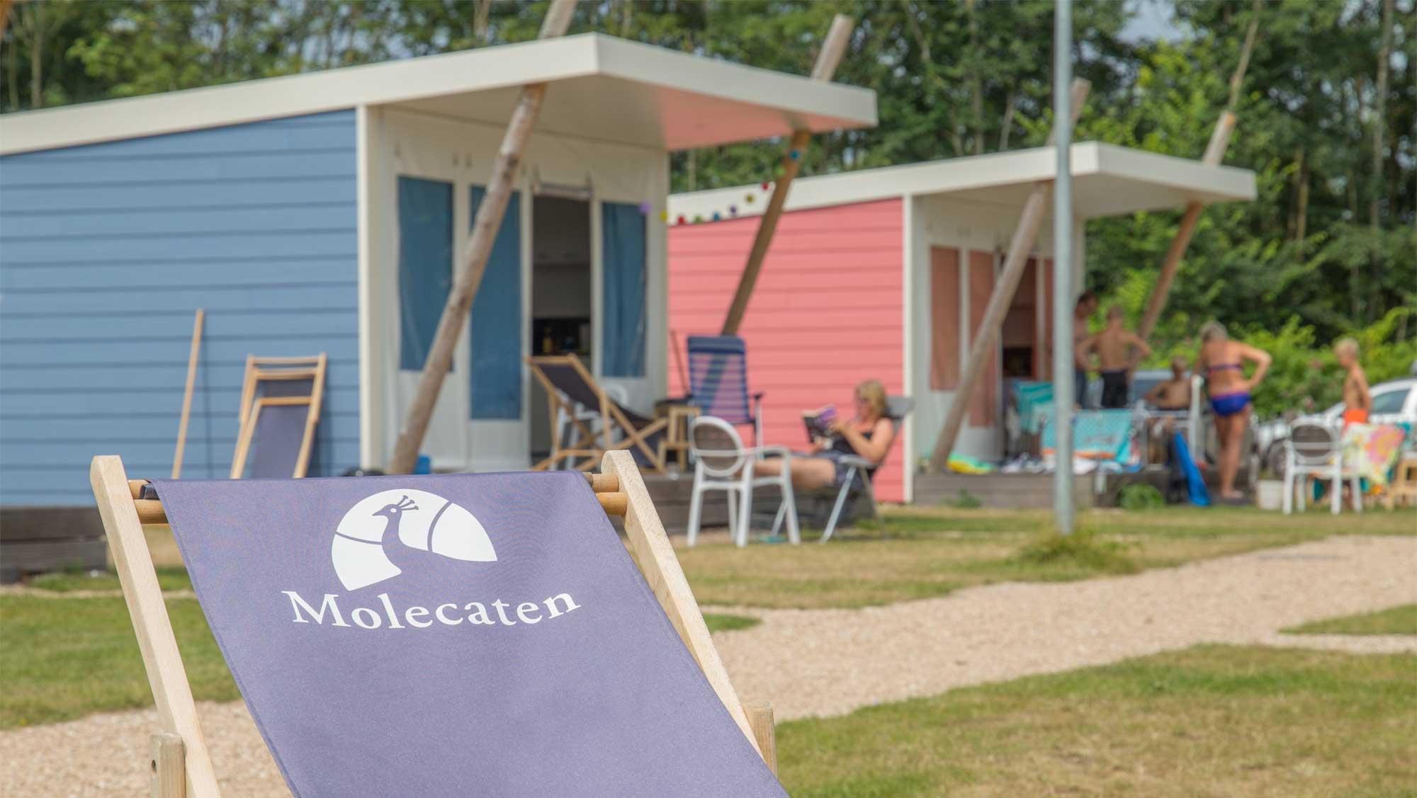 5pers kampeer cabin Vlinder Molecaten Park Rondeweibos 04