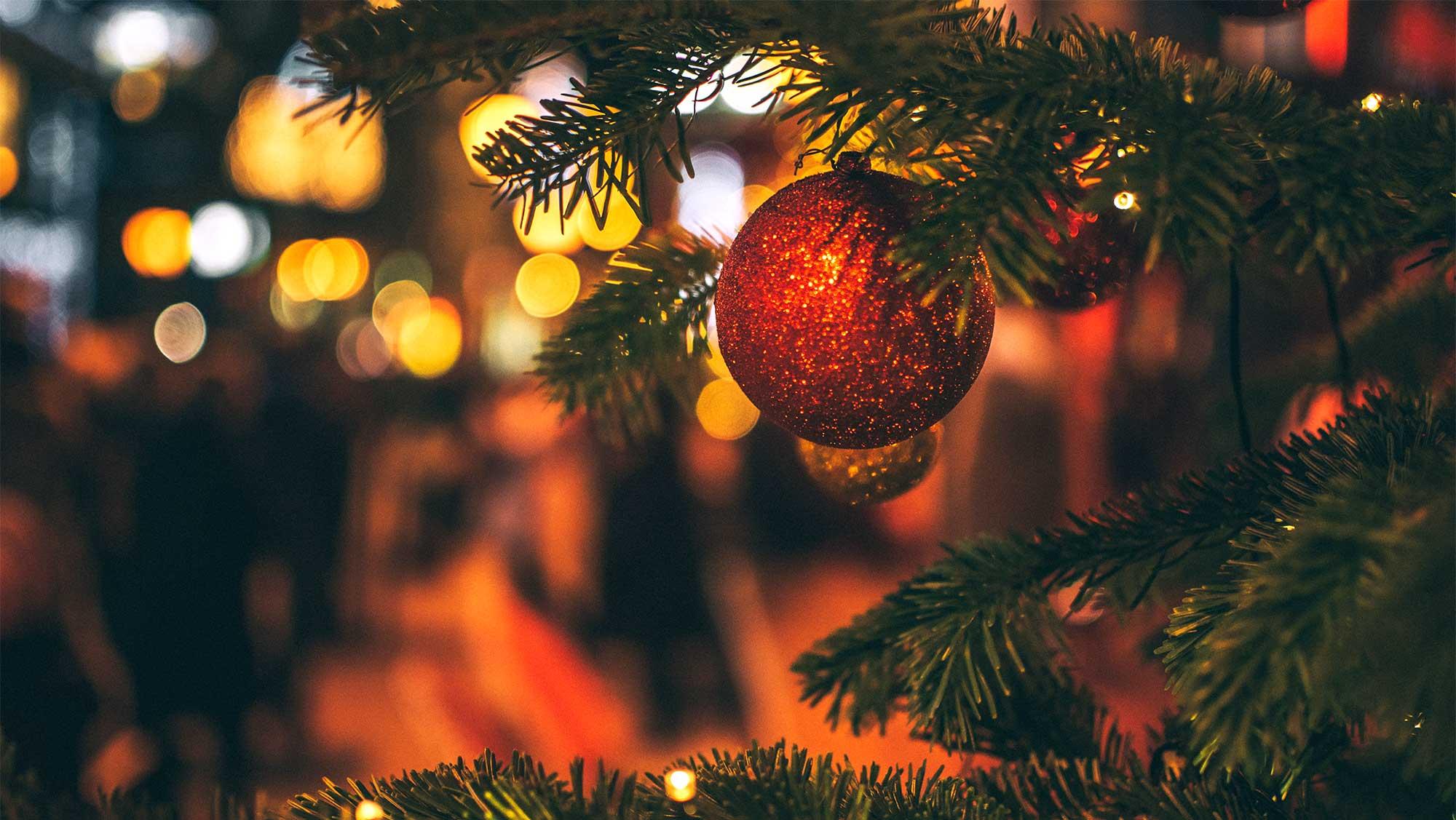 Bij kerst hoort een boom 02