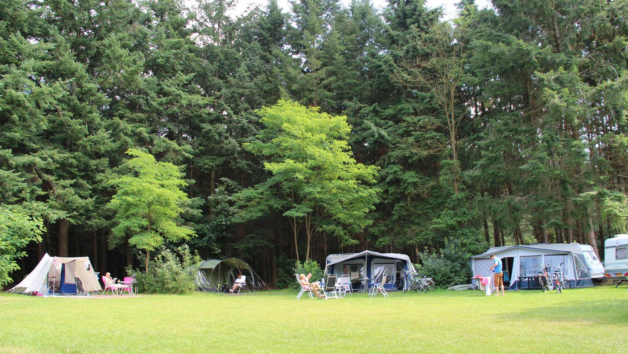 Comfortplaats kamperen Molecaten Park Landgoed Ginkelduin 01