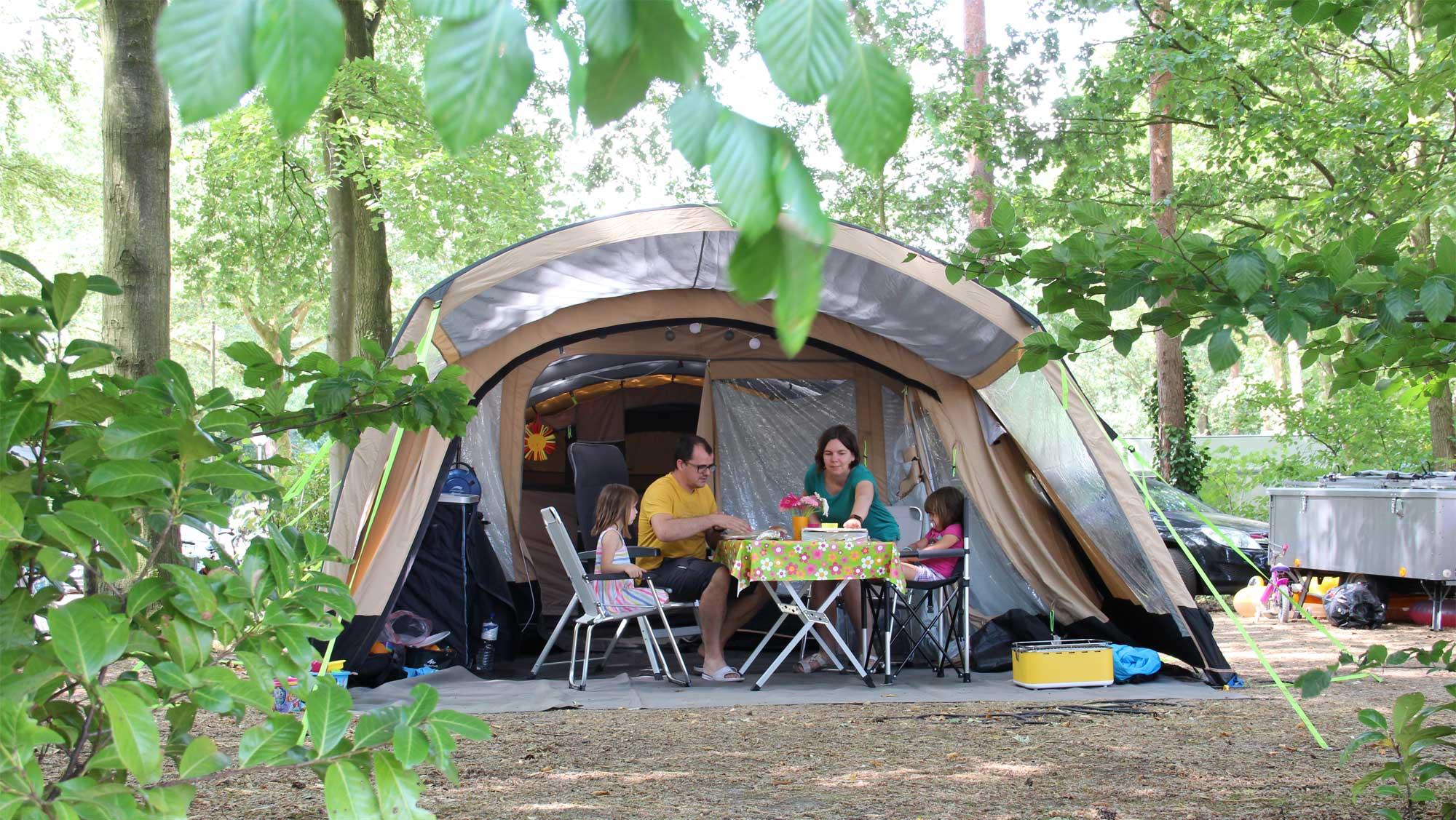 Comfortplaats kamperen Molecaten Park Bosbad Hoeven 01